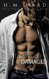 damaged (1)