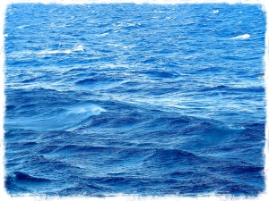 PT_Ocean