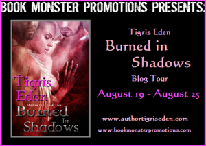 Series Spotlight: Review & Giveaway for Burned in Shadows (Shadow Unit #2)