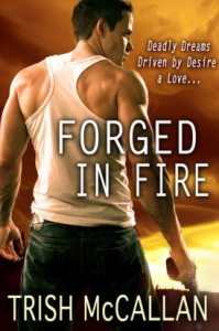 Forged in Fire Book Cover