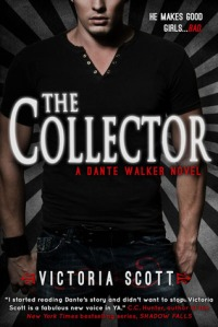 The Collector Book Cover