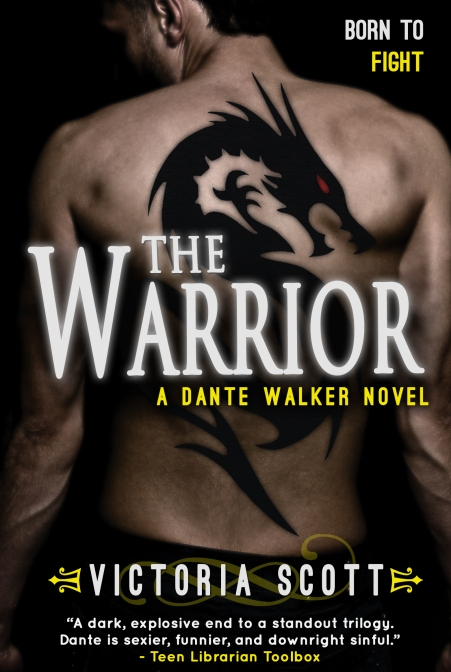 The Warrior Book Cover