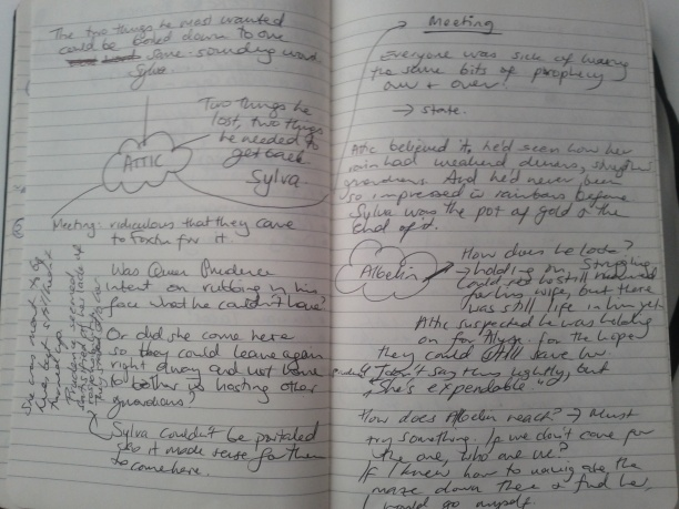 Anyta Sunday__Sun Mountain Reviews__Picture of Notes