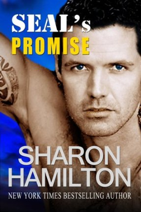SEALs Promise Book Cover